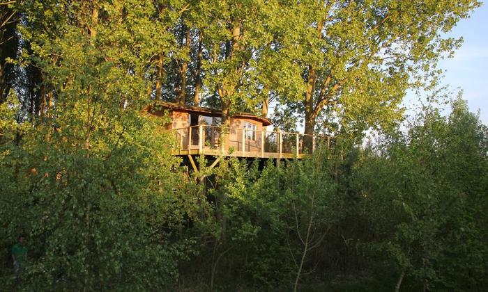 Excursion-Séjour-Lille-nuit-cabane-forêt-de-Phalempin